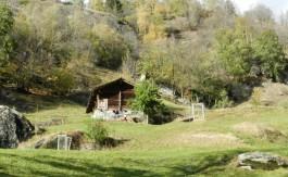 Agten-Immobilien-Stall-Aletschgebiet